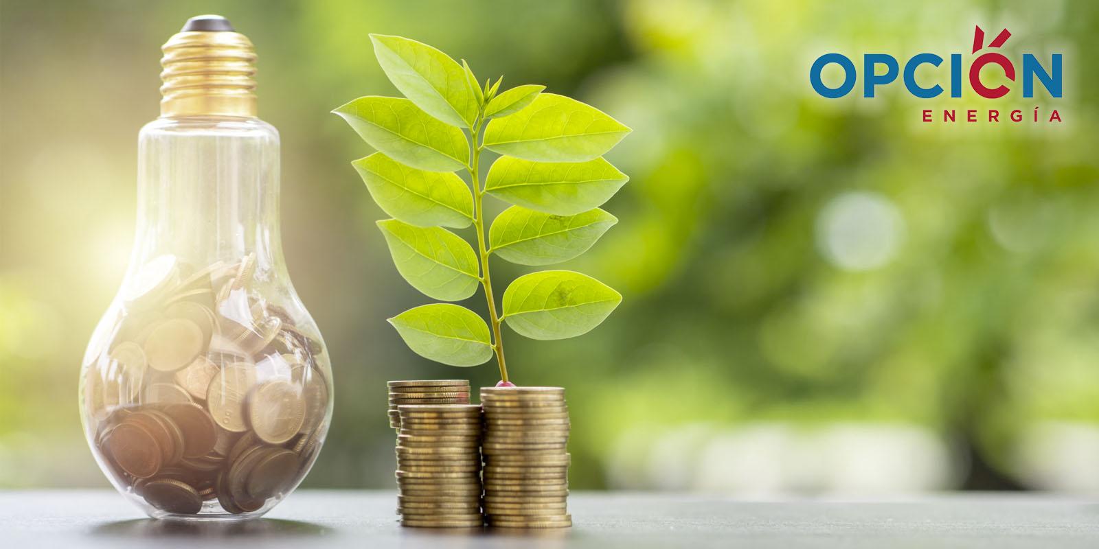 Pagar el precio más barato por la electricidad de tu hogar