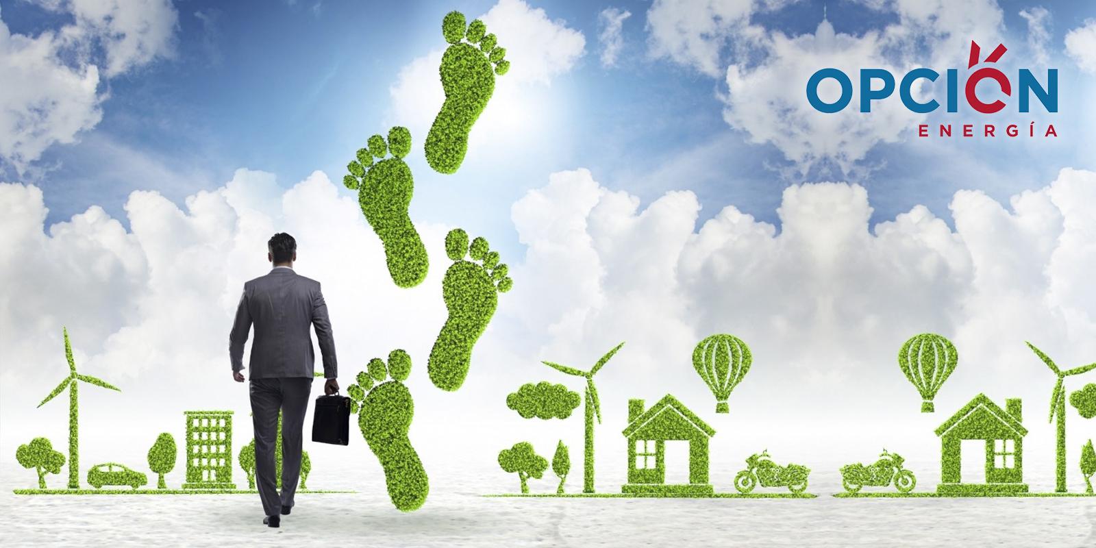 La eléctrica renovable pisa con fuerza
